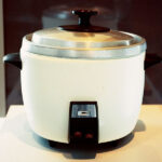 Top 10 Best Personal Rice Cookers Reviews in 2021